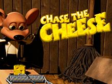 Играйте на деньги с бонусом в слот Преследуй Сыр