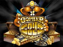 Играйте в Золото Сурка на деньги
